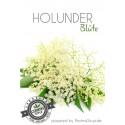 Holunderblüte Postmix 10l