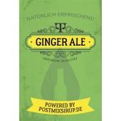 Ginger Ale Postmix 10l