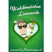 Waldmeister Postmix 10l